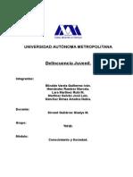 Delincuencia Juvenil MX U Autonoma