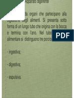 anatomia_veterinaria_-_lezione_apparato_digerente_.pdf