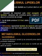Metabolism Lipide Anabolism