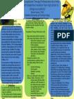 brooke poster presentation temp 5