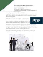 Planeación y Evaluación Del Capital Humano