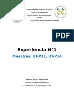 Microscopía de Menas UT-P11 UT-P14