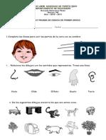 pruebadiagnosticadecienciadeprimero1-100719145118-phpapp02.doc