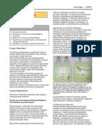 diarreia.pdf