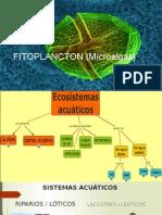 FITOPLANCTON (Microalgas).pptx