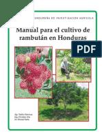 164701776 Manual Rambutan
