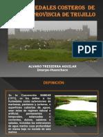 Humedales costero de Trujillo