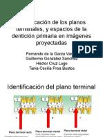 Identificación de Los Planos Terminales, y Espacios