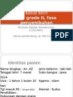 DHF grd II