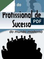 O Perfil Profissional de Sucesso Do Mundo Moderno - Anderson H. Batista