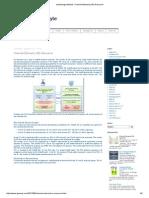 Channel Element (CE) Resource.pdf