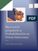MACROCICLO PREPARATORIO Y PREHABILITACIÓN EN PILOTA VALENCIANA