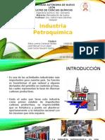 Industria Petroquímica y sus formas de contaminación .
