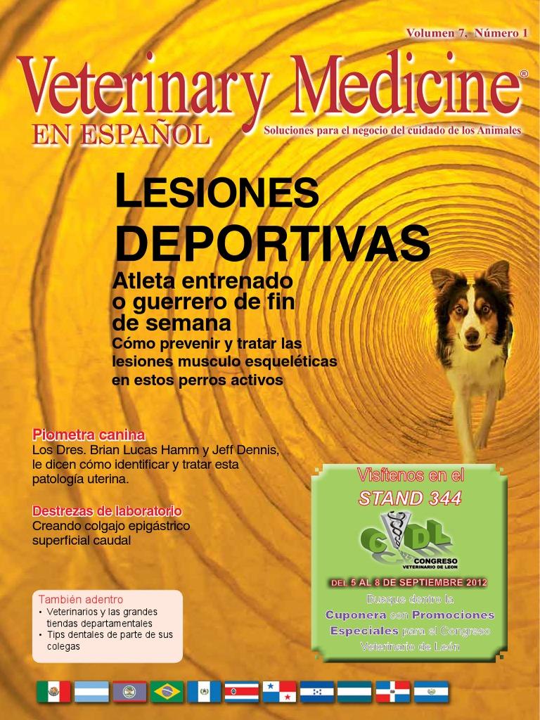 Lesiones Deportivas en Perros