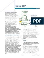 Introducing CHP.pdf