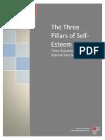 3 Pillars of Self Esteem