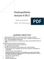4 Lecture 4 EN3 Photosynthesis