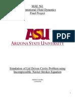 2D lid diven cavity final  report.pdf