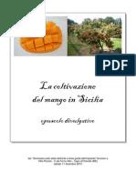 Coltivazione Del Mango in Sicilia