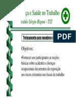 Introducao Treinamento Membros Cipa