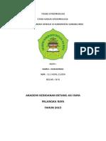 Tugas Epidemiologi DBD