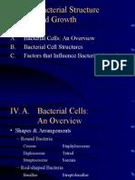 Bacteria 2
