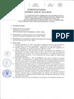 CASNº013-2015 Apoyo Pedagogico
