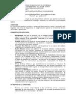 AUDITORIA COMO PRACTICA PROFESIONAL.pdf
