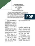 Trabalho Relatório Movimento Vertical Livre