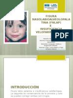 Fisura labiopalatina FLP E insuficiencia velofaríngea IVF