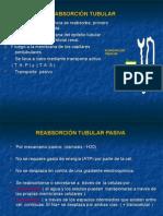 Reabsorcion Tubular.