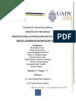 Proyecto Final Diseño de procesos FINAL