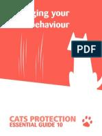 Managing Your Cat's Behaviour
