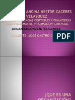 ORGANIZACIONES INTELIGENTES 1 CLASES.ppt
