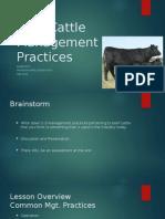 beef cattle management practices (unit plan)