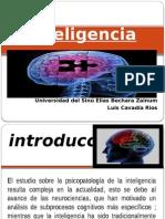 inteligencia (1).pptx