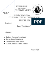 Práctica-2-Ecosistema