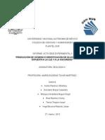 Informe Actividad Experimental Ecosistemas