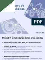 BQ-Metabolismo de Aminoacidos-Equipo 1