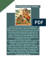 Agricultura Prehispánica e Incaica.docx
