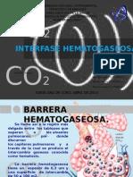 INTERFASE HEMATOGASEOSA