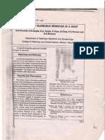 A Globosus in a goat a case report