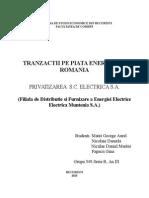 Privatizarea Sc Electrica Sa