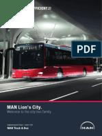 Mann Lions City - prezentare