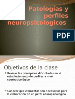 Patologias y Perfiles Neuropsicologicos