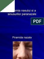 Anatomia Nasului Si a Sinusurilor Paranazale
