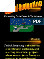Capital Budgeting - theory & practice