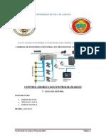 informe2 plc
