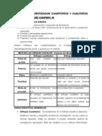 TÉCNICAS DE INVESTIGACION CUANTITATIVO Y CUALITATIVO.docx