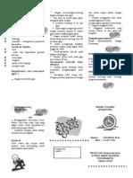 Leaflet Fraktur
